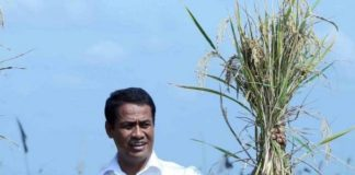 Menteri Pertanian Berikan Traktor Gratis Kepada Petani Miskin