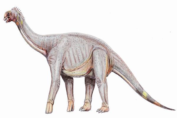 Telah Ditemukan Jejak Panjang Kaki Dinosaurus