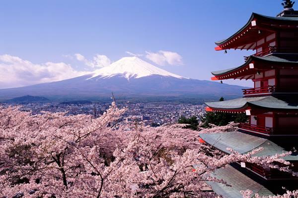 Ingin Tahu Lokasi Urus Bebas Visa ke Jepang ?