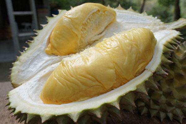 Wow, Inilah Durian Candy Khas Magelang yang Manisnya Seperti Permen