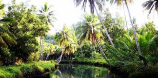 sungai maron, wisata pacitan, amazone pacitan