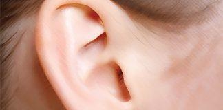 telinga tiga dimensi